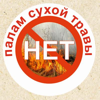 http://kopnino.sbnray.ru/images/antipal.png
