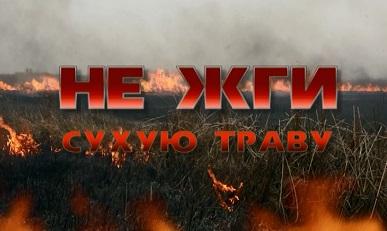 http://kopnino.sbnray.ru/images/ne_zhgi_suhuu_travu.jpg